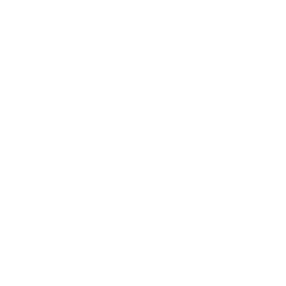 Flygoow